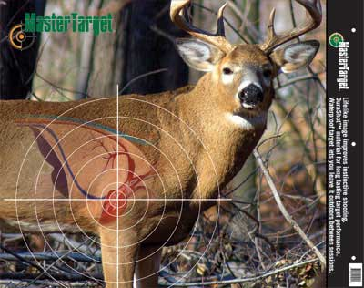completely new   huntingnet   forums