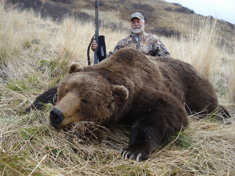 Largest Kodiak Bear Ever Recorded for Pinterest